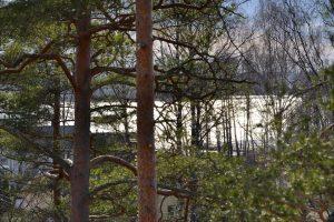 Myytävät asunnot Saunaniemi, Espoo: viimeinen vapaa asunto myynnissä osoitteessa Tapulimäki 4. Rauhaa, metsää ja merellistä ympäristöä.